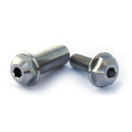 Armour bikes Hub Bolts set Ti Odyssey Clutch Set 1pc. And 14x1.25mm and 1pc. 3/8x24tpi Silver